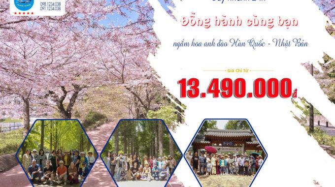 Tour Trải Nghiệm Xứ Sở Kim Chi 5n4đ Chía Chỉ 13.490.000 đ
